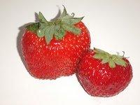 fraises logo