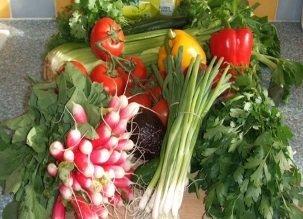 Alimentation crue et vegan, réussir sa digestion !