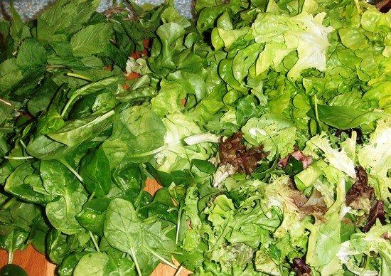 salades calcium