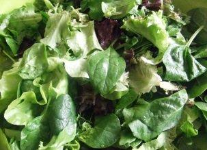 Les légumes verts dans l'alimentation crue