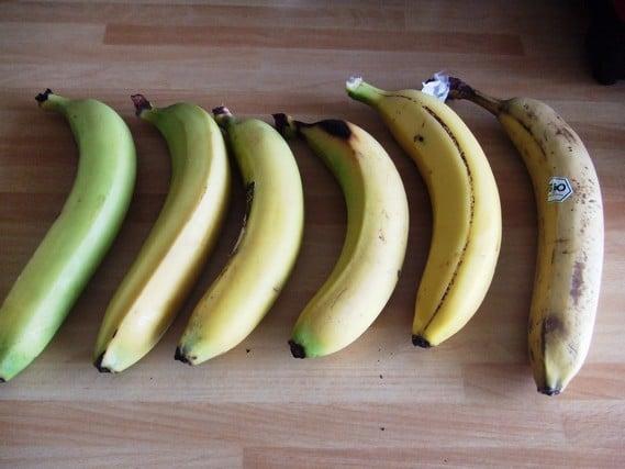 bananes maturité