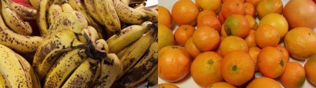 2fruitspluspetit