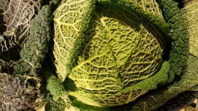 La vitamine K1  et les légumes verts