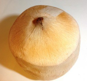 La noix de coco… j'adore !