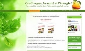 blog crudivegan 2014
