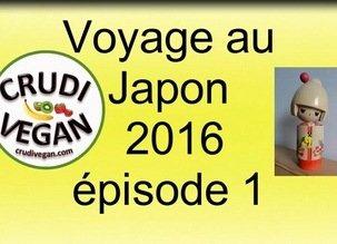 Les repas vegan dans l'avion – Voyage au Japon, épisode 1