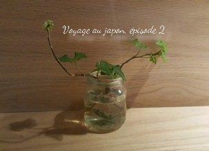 Faire une salade vite fait, les restaurants vegan japonais, les courses, voyage au Japon épisode 2