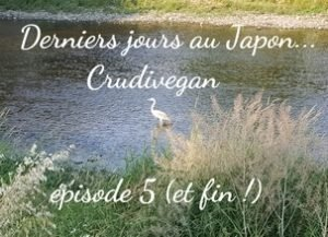 voyage au japon 5