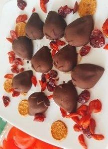 chocolats maisons crudivegan