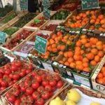 Alimentation crue versus Alimentation vivante, savoir choisir !