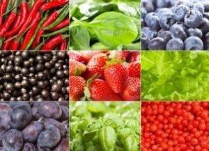 Données scientifiques sur les végétaux