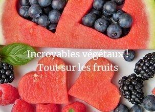 Incroyables végétaux – Tout sur les fruits (ou presque) !